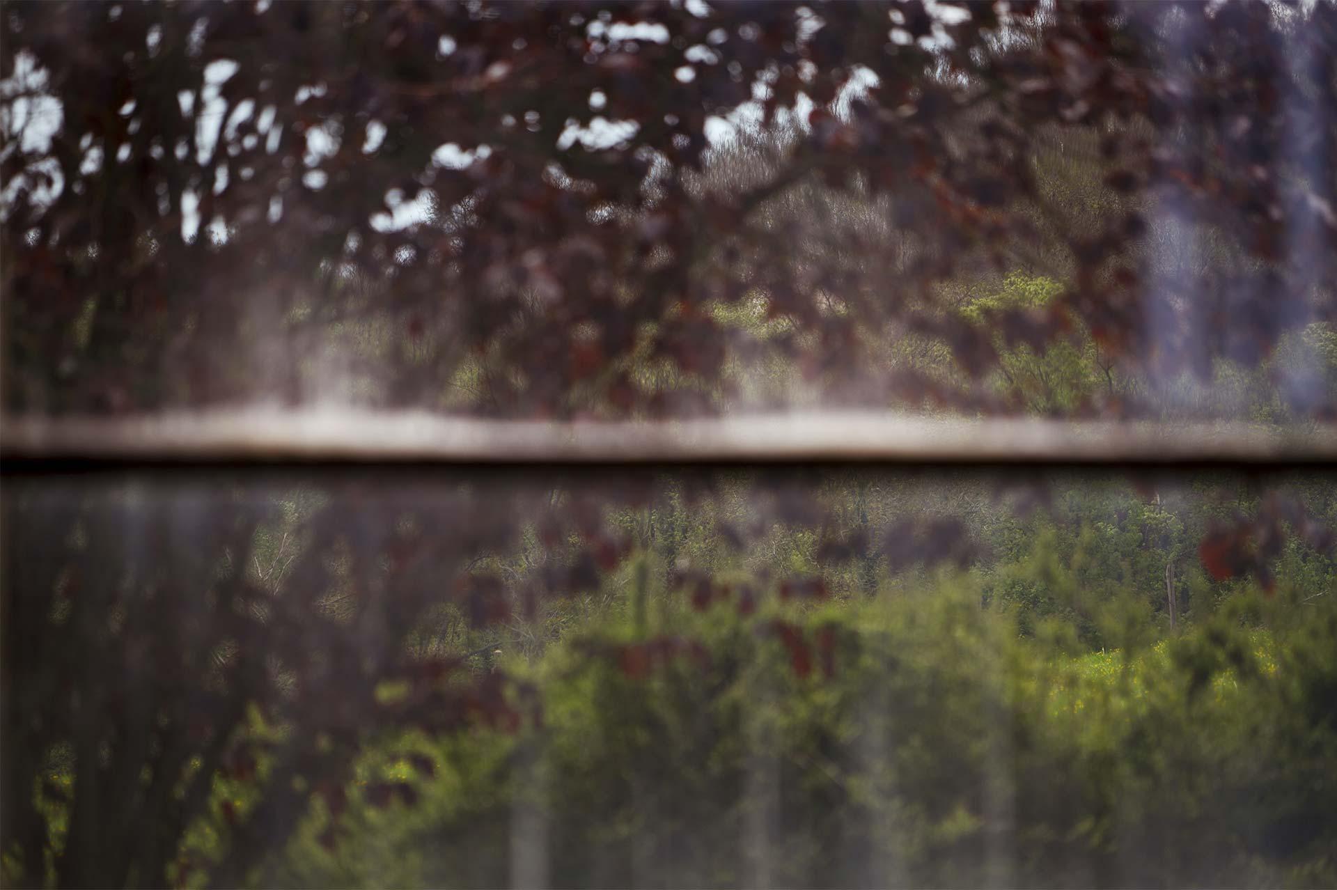 01_Galerie-La-Forest-Divonne