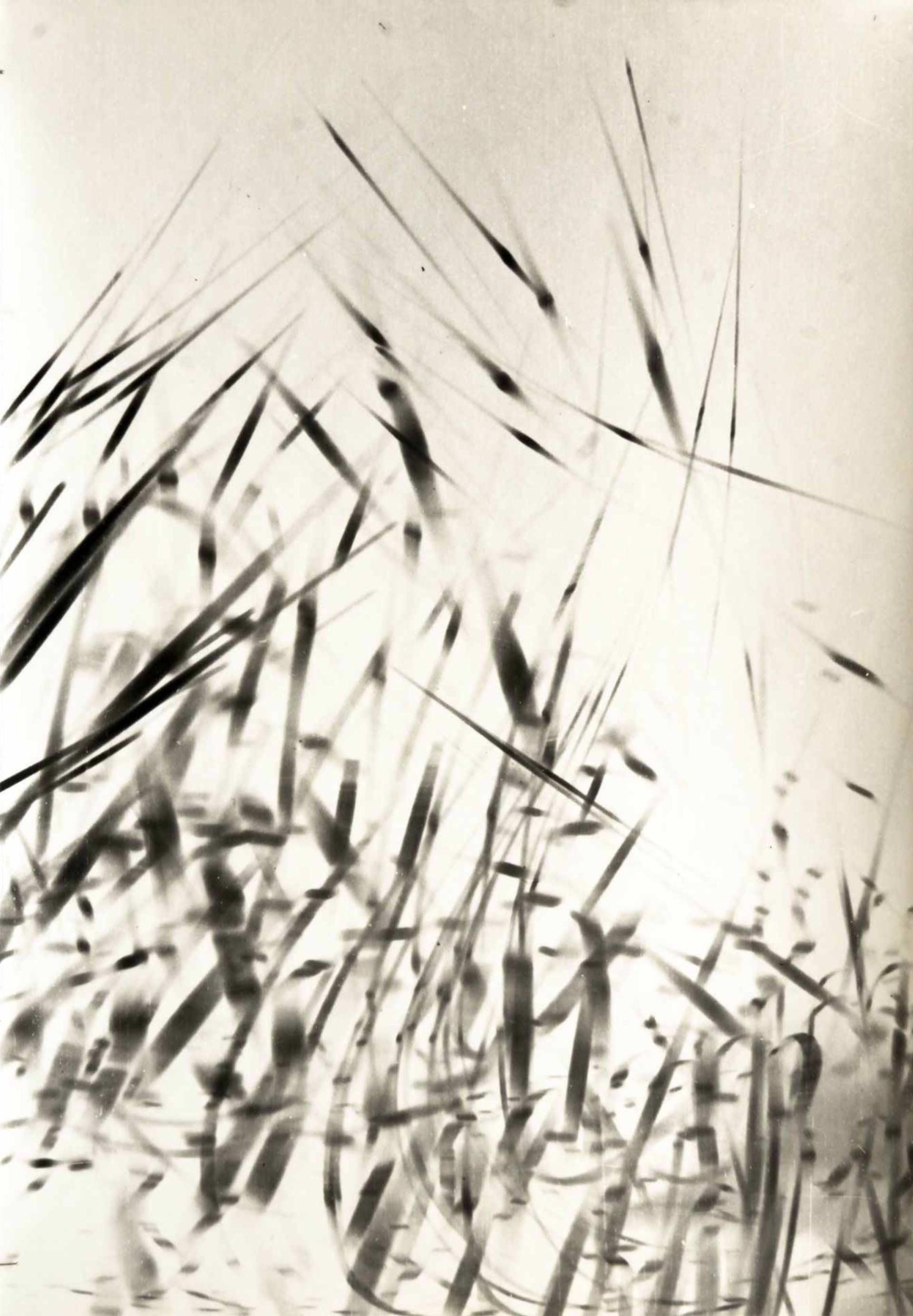 01_Galerie-Maria-Wettergren