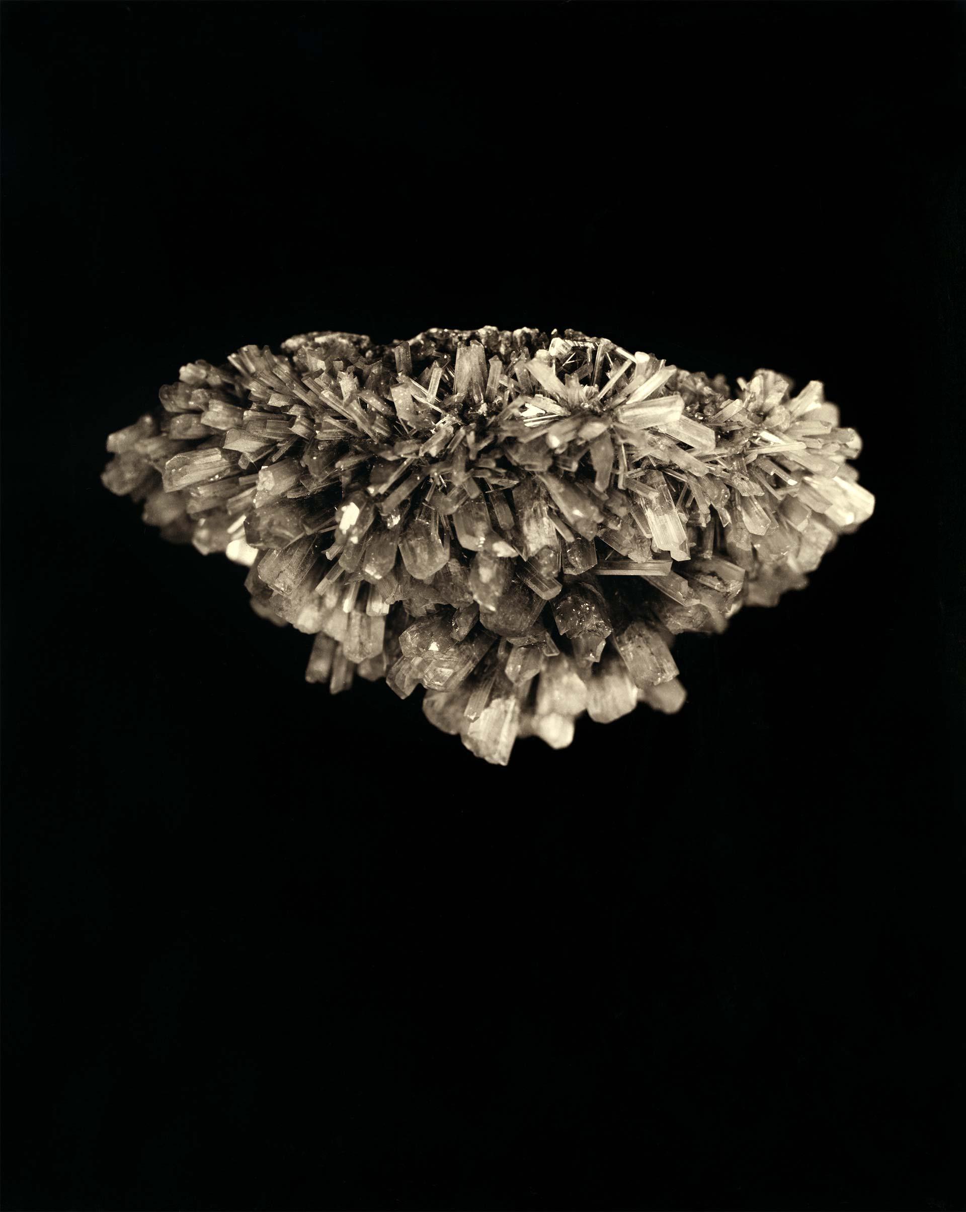 04_Laurence-Esnol-Gallery